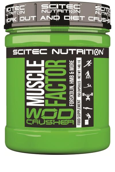 Muscle factor - Scitec nutrition - HMB | Toutelanutrition