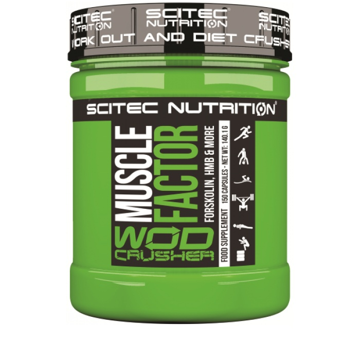 Muscle factor - Scitec nutrition - HMB | Toutelanutrition