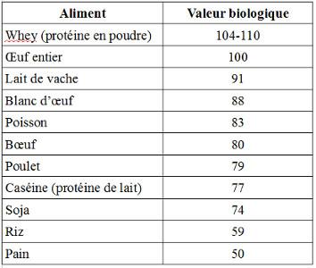 Valeur biologique des protéines