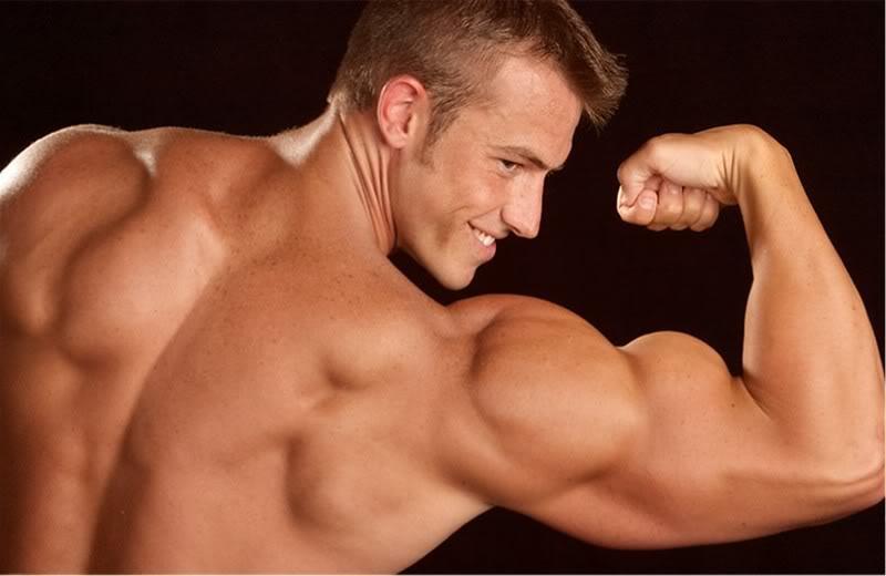 Séances d'entraînement biceps hardcore