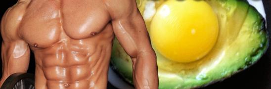 Le cholestérol pour la masse musculaire : Le cholestérol est-il si mauvais ?
