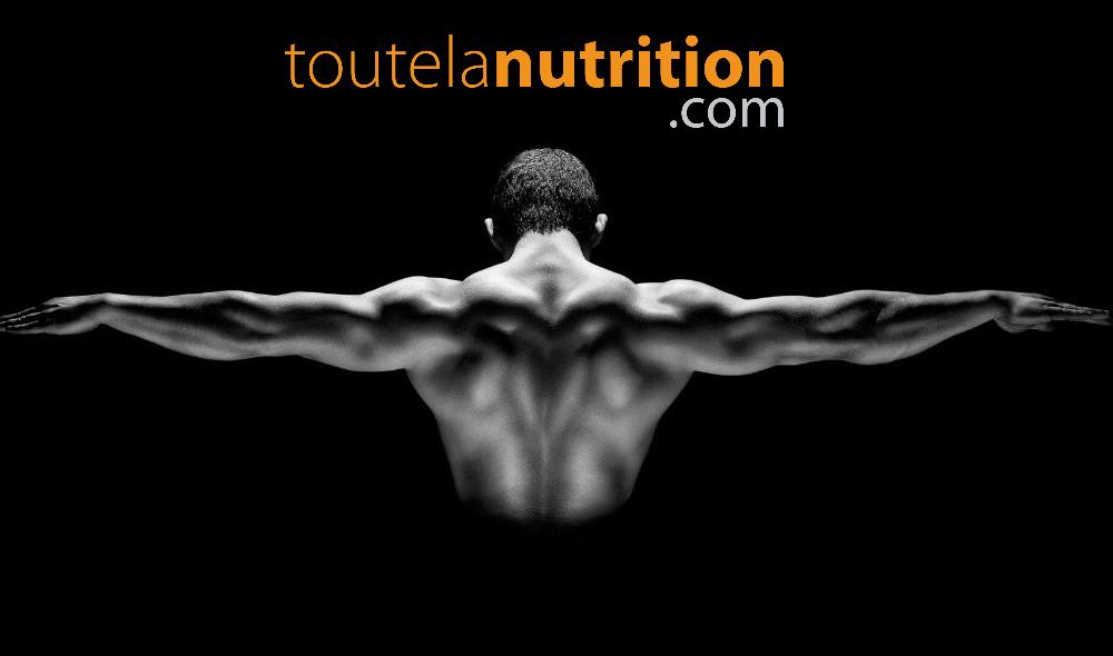 Pourquoi une mauvaise posture élève le cortisol et fait chuter la testostérone