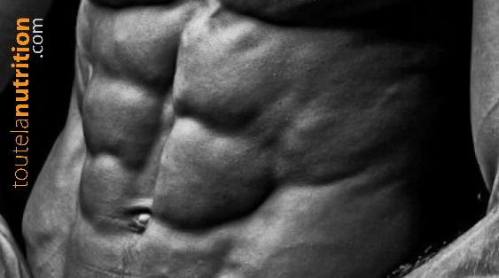 L'hormone adiponectine : incontournable pour comprendre la prise de graisse