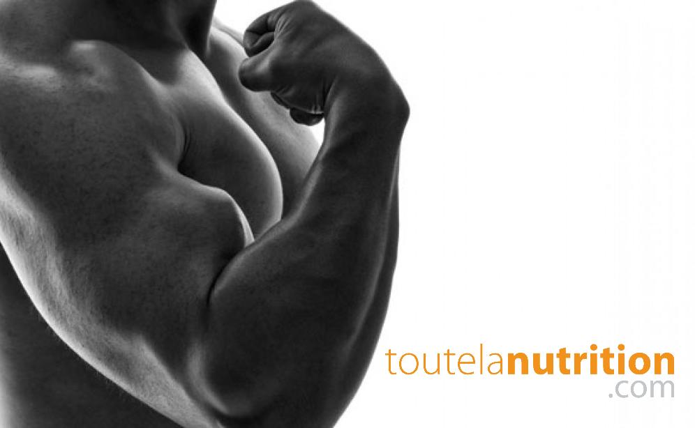 Le meilleur exercice pour les biceps que vous n'avez jamais essayé !