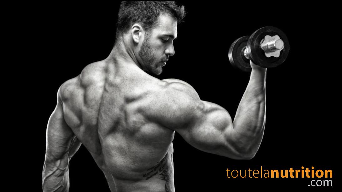 Augmentez votre congestion musculaire et votre vascularité !