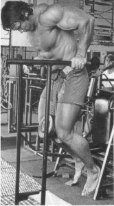 arnold-pull-up-dips