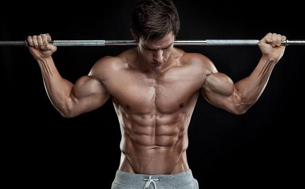 Prendre du muscle sec