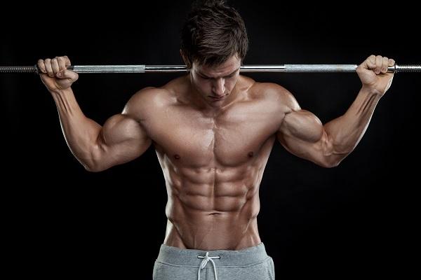 muscle-sec