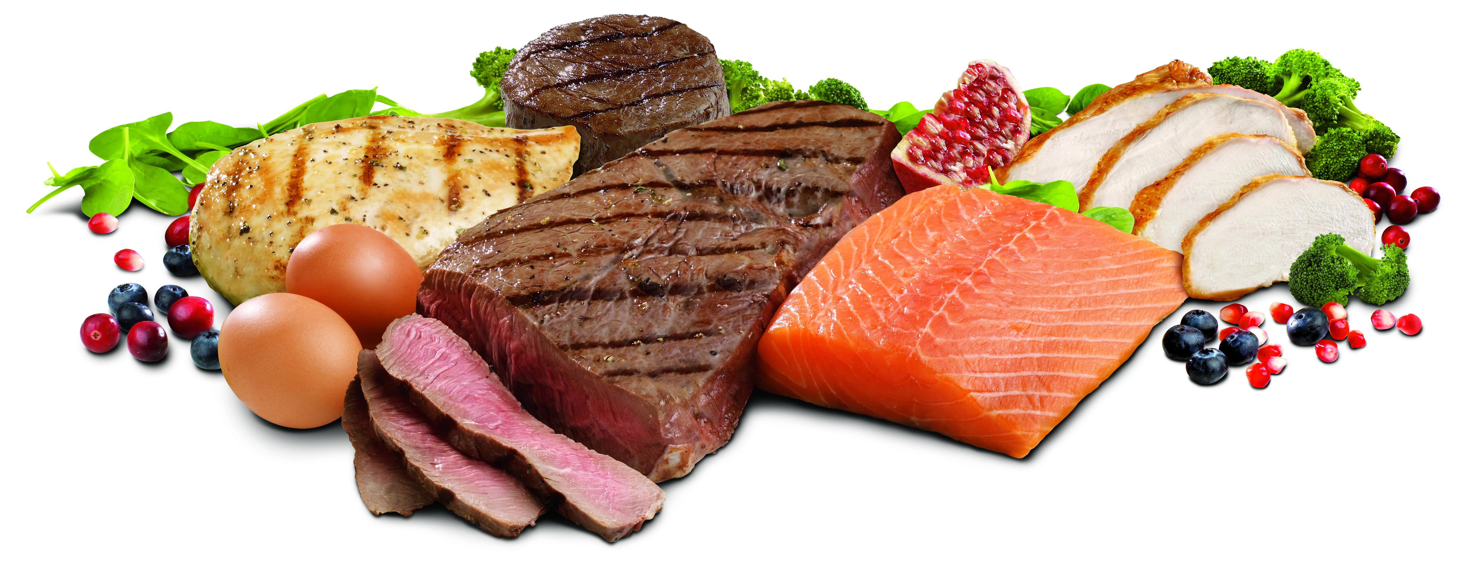 Qu'est-ce que la protéine ?