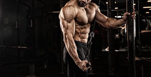 Tout ce que vous devez savoir sur l'hypertrophie musculaire