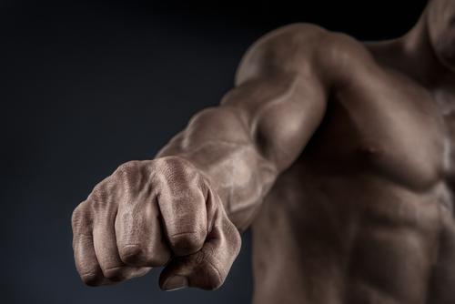 Plus de masse musculaire: plus de longévité?