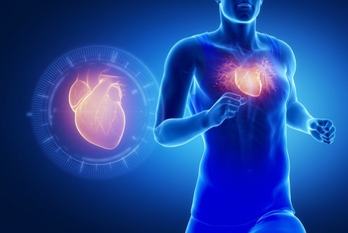 Exercice et adaptation cardiaque