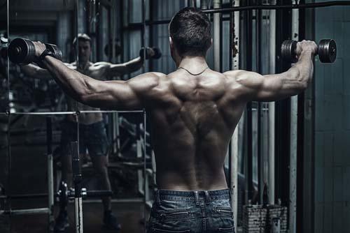 Elévations latérales haltères épaules