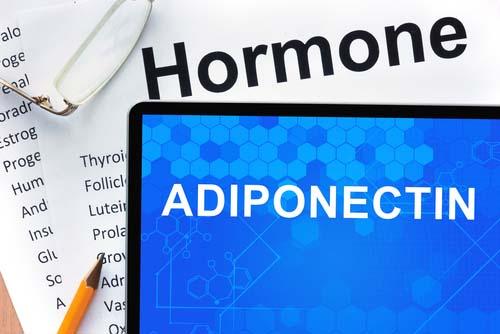 Adiponectine