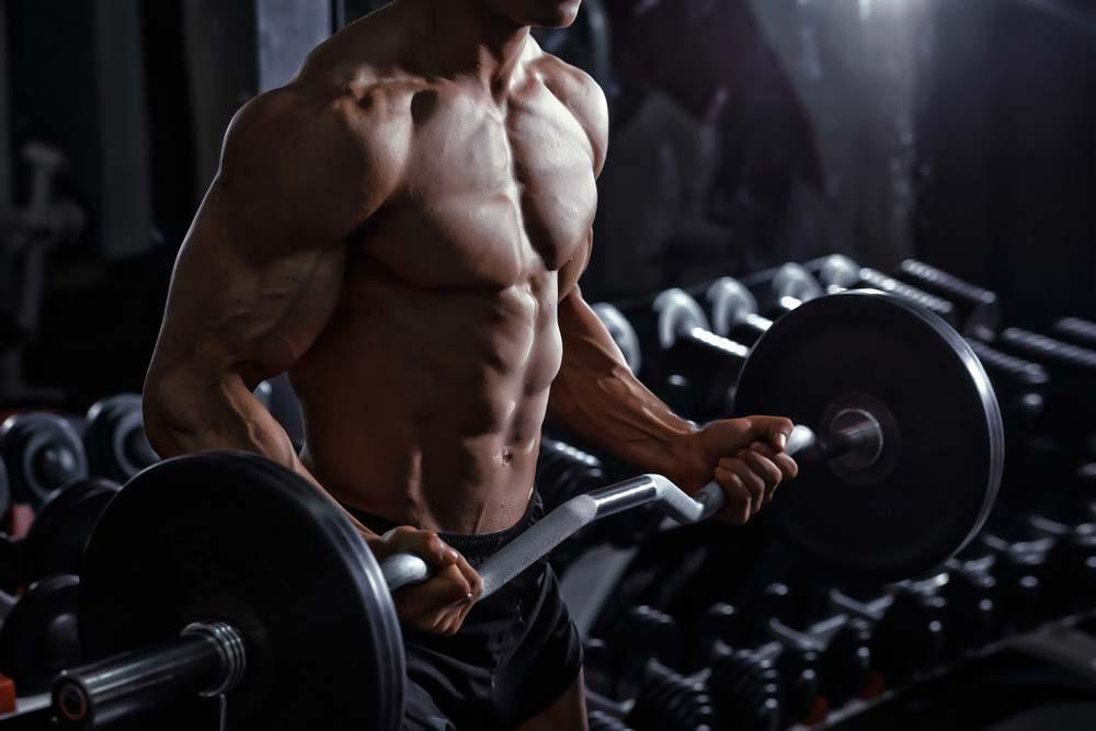 Curl barre EZ biceps