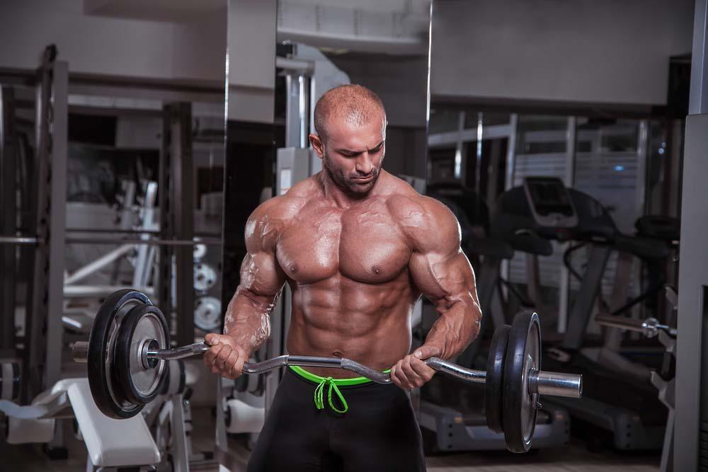 Curl Barre EZ pour les biceps