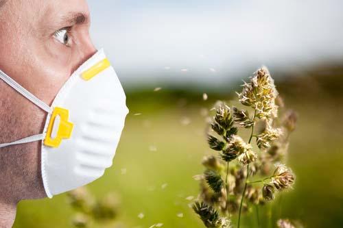 Eviter les allergies cet été