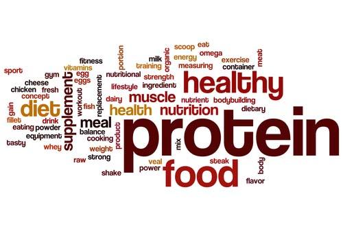 questions fréquentes sur la protéine