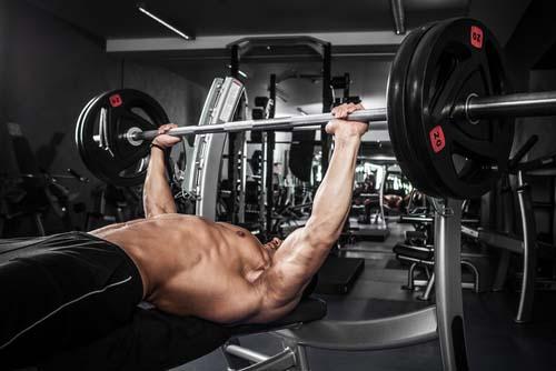 Le programme d'entraînement pour la construction musculaire