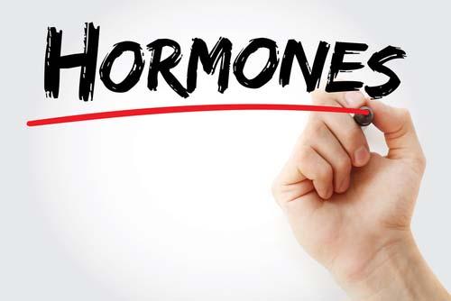 Hormones et construction musculaire