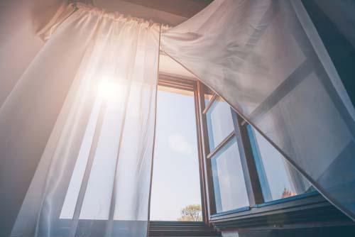 La fenêtre anabolique