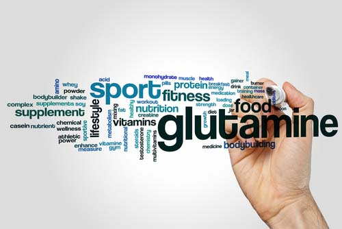 Tout savoir sur la glutamine
