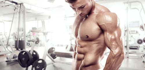 L'avoine aide à prendre du muscle