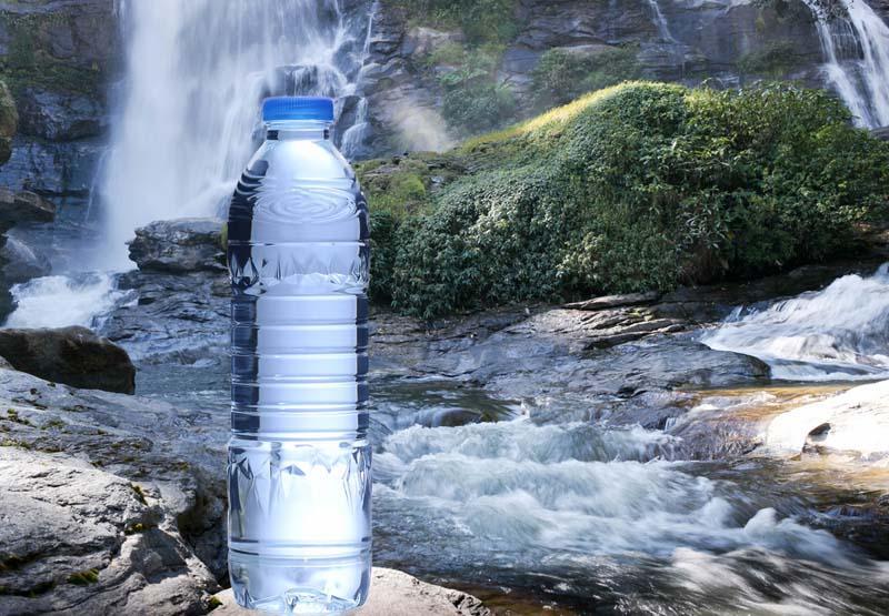 Le rôle de l'eau dans le corps humain