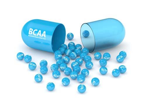 Les BCAA