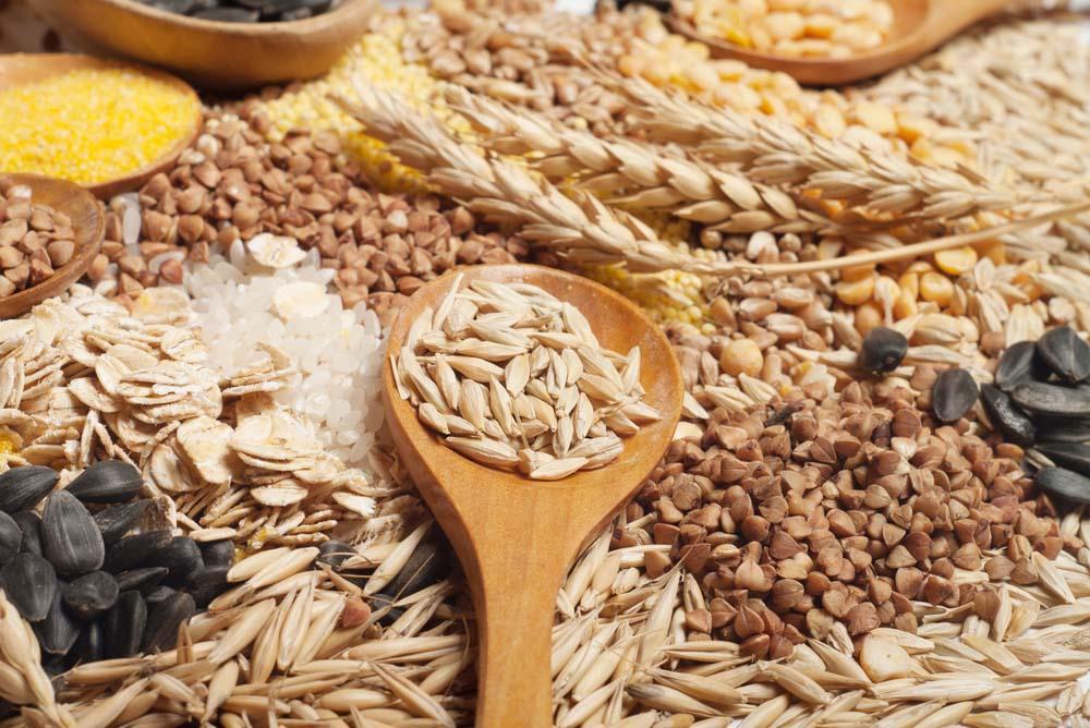 Céréales et construction musculaire