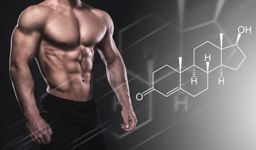 Natural testosterone: How to optimize its production ...