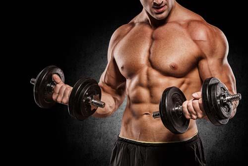 Les outils pour l'entraînement en musculation