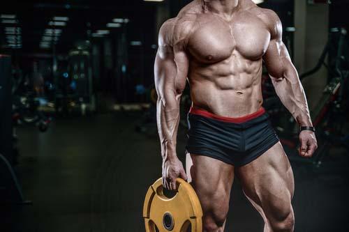 Prise de masse muscu