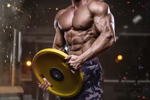 Comment progresser en muscu?
