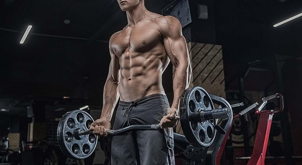 Protéines et prise de masse