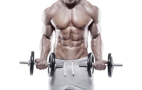 Tirer le meilleur profit de ses séances de musculation