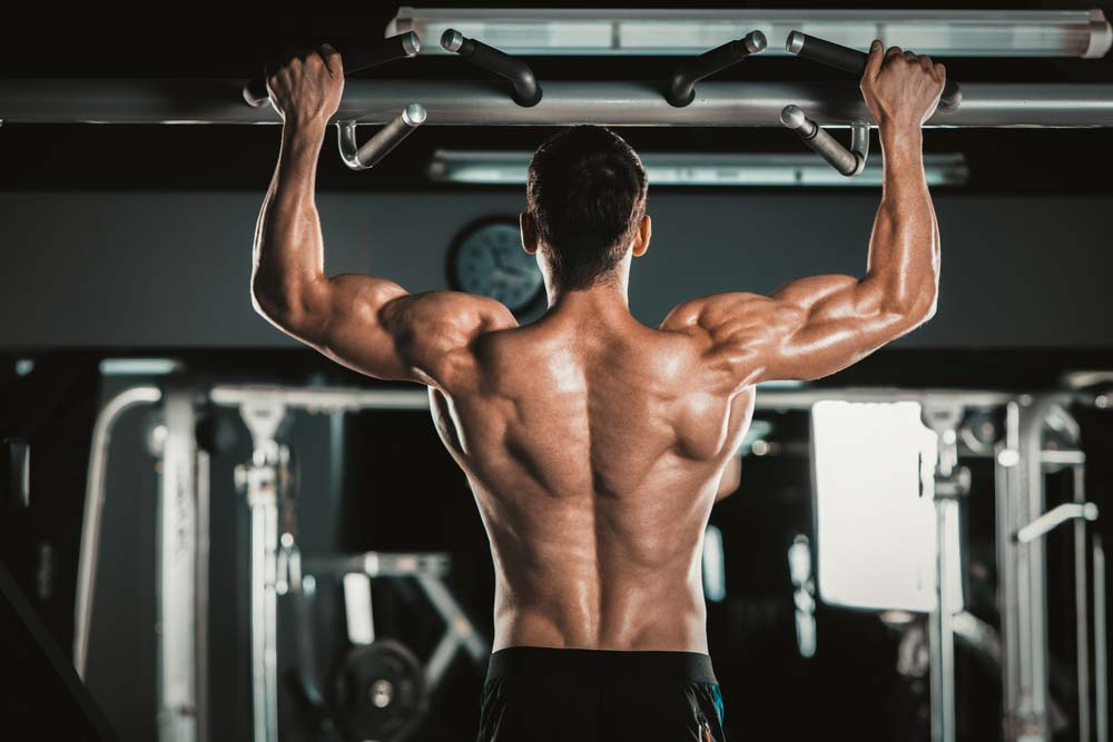 Tractions pour muscler le dos