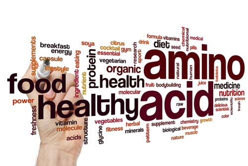 Les acides aminés et les bcaa