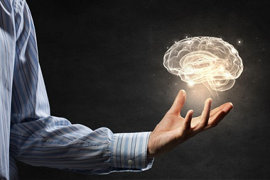 Bétaïne et cerveau
