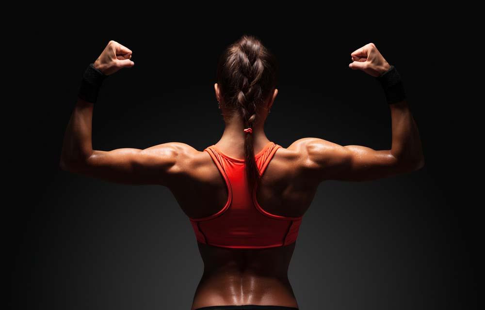 Biceps femmes