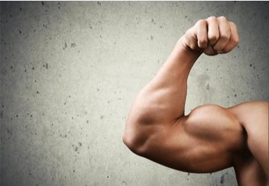 Comment les muscles grossissent-ils?