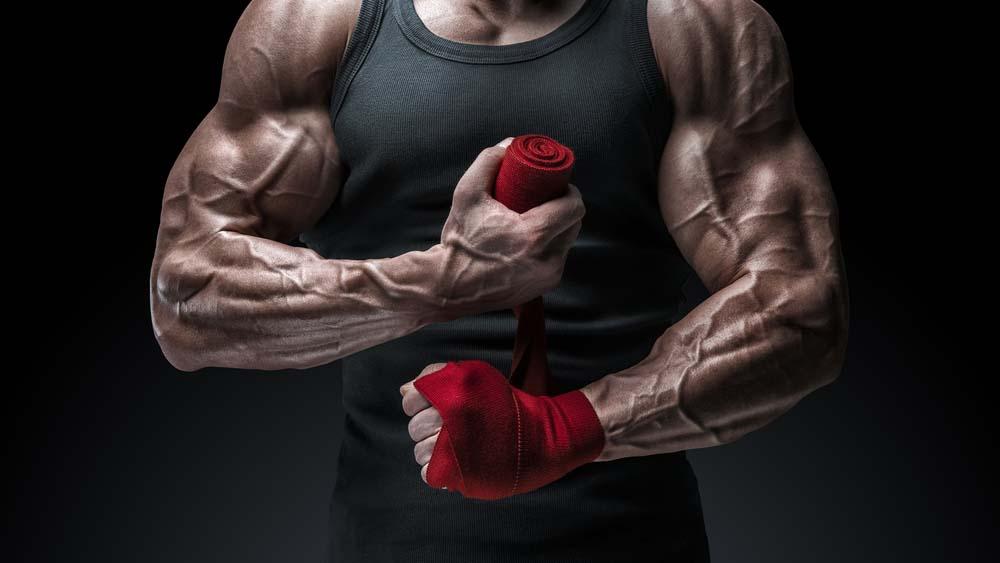 Congestion musculaire et vascularité