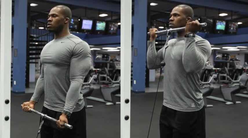Curl poulie basse biceps