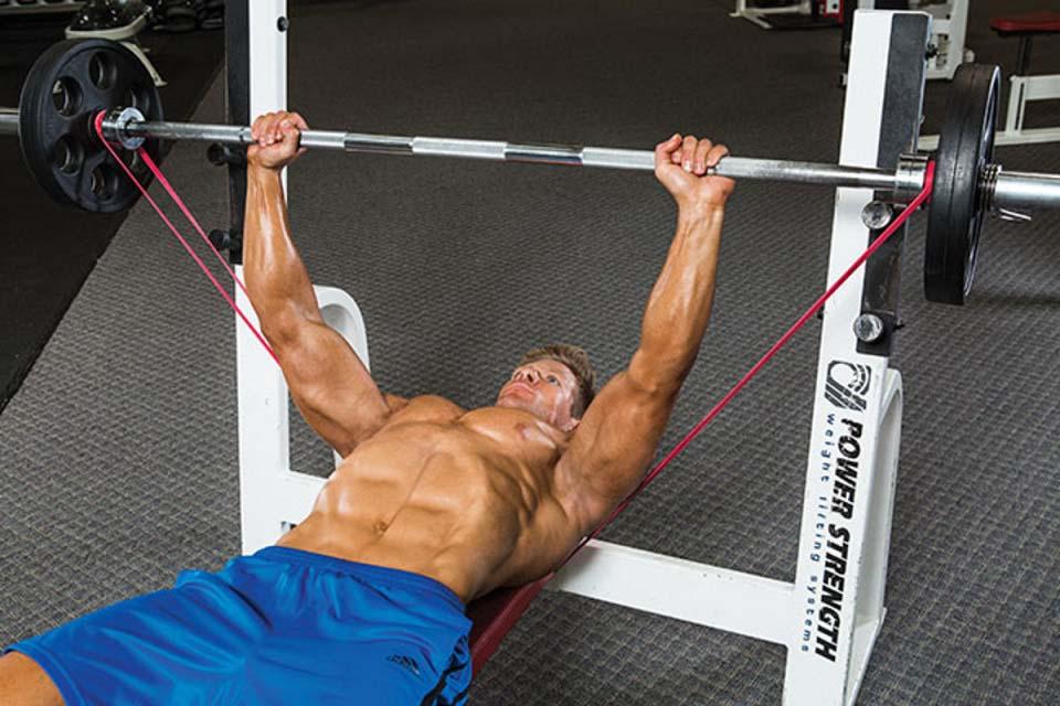 Comment utiliser les élastiques en musuculation
