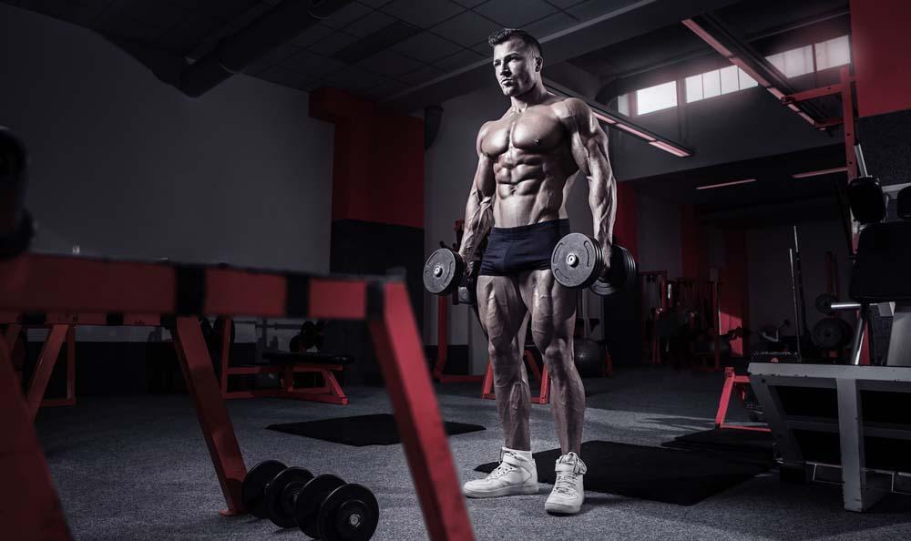 Entrainement définition musculaire