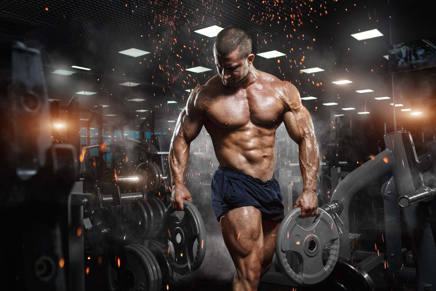 programme musculation pour experts