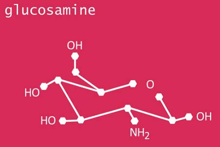 La glucosamine pour la gymastique