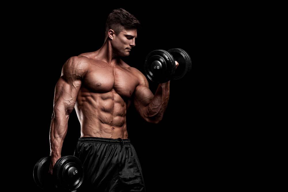 Entrainement construction musculaire
