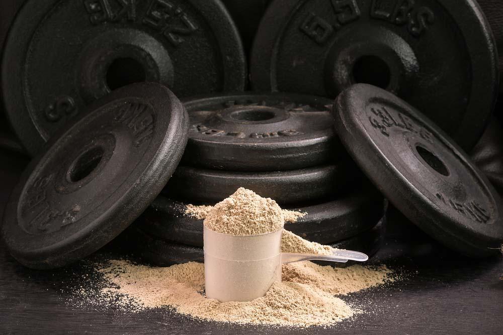 Quelles protéines pour le développement musculaire?