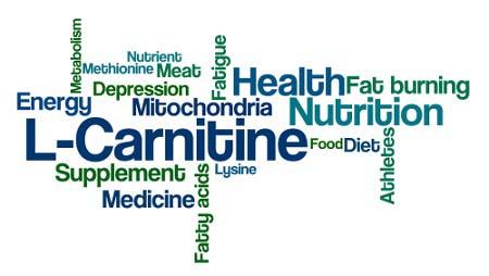 L-carnitine et les cours collectifs